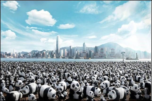Panda 1600.jpg